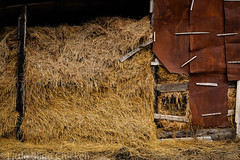 the hayloft.