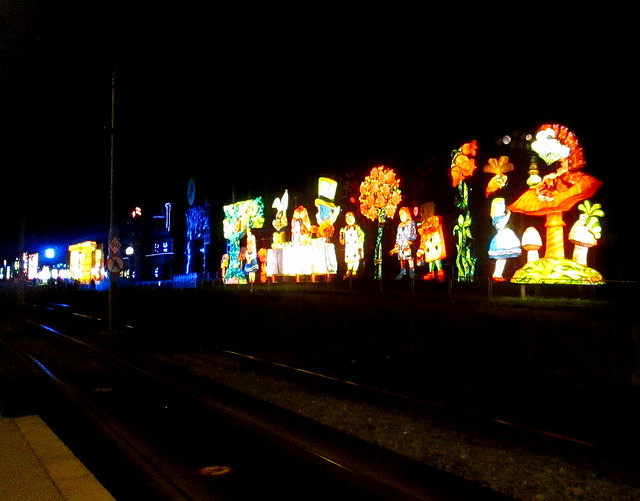Alice in Wonderland Lights