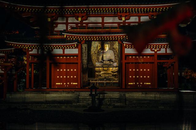 Kyoto_Byodoin_15