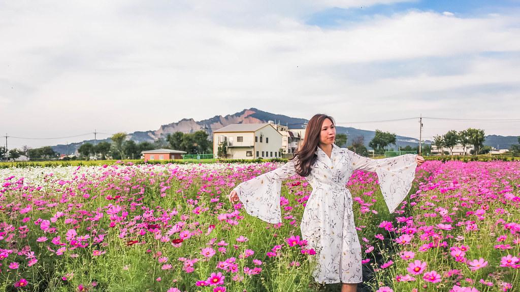 zhong-she-guan-guang-flower-market-taichung-alexisjetsets-3