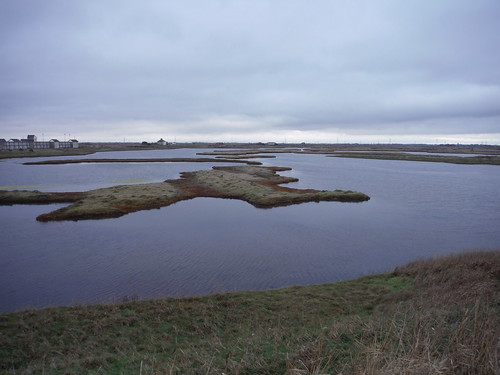 Water-Filled Pits, Lydd Ranges