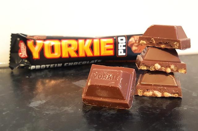 Yorkie Pro