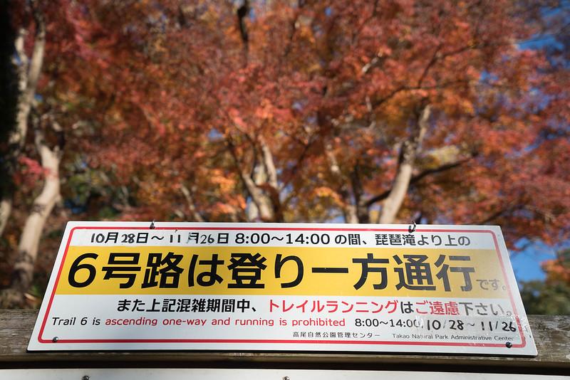 20171119_高尾山_0034.jpg