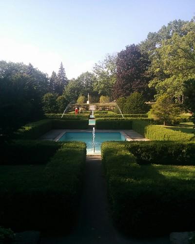 Garden #toronto #highpark #garden #green #latergram