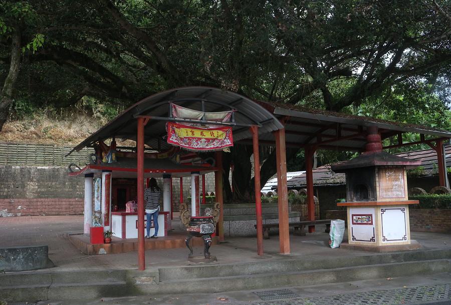 台東景點 羅山自行車道19