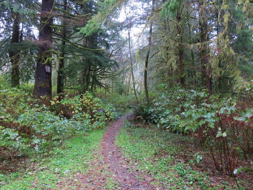 Lower Cummins Ridge Trailhead