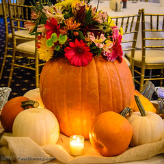 Pumpkin Centerpiece @ 2017 Kelly Faughnan Golf Tournament,  Westfields Golf Club - Clifton, VA