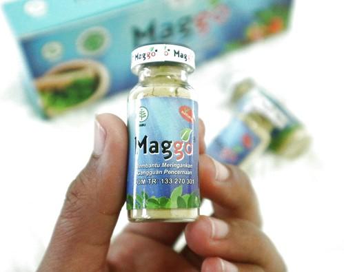 maggo obat tradisional