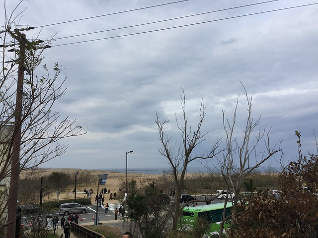 奥に見えるのが鳥取砂丘2