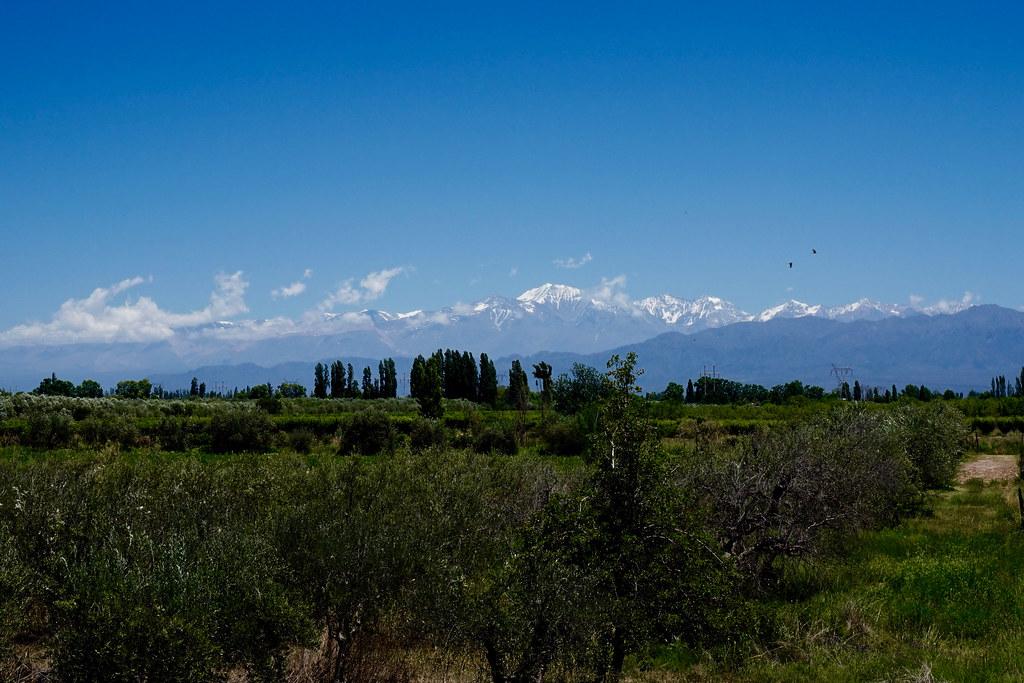 Argentina - Mendoza - 17