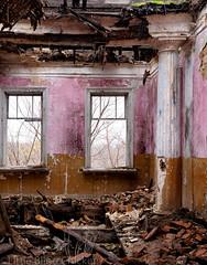 Kleinmichel estate. the room.