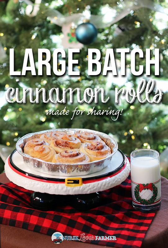 Large Batch Cinnamon Rolls, Made For Sharing