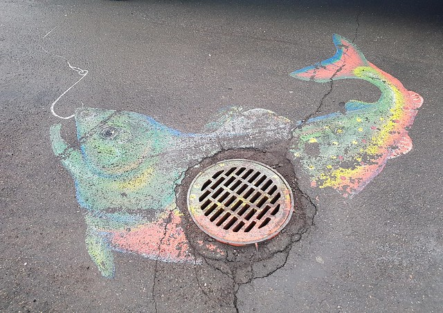 Manhole cover fish - Riverview, New Brunswick