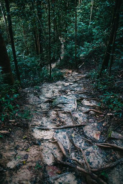 Tab Kak Hang Nak Nature Trail