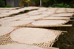 Rice Noodle Sheets