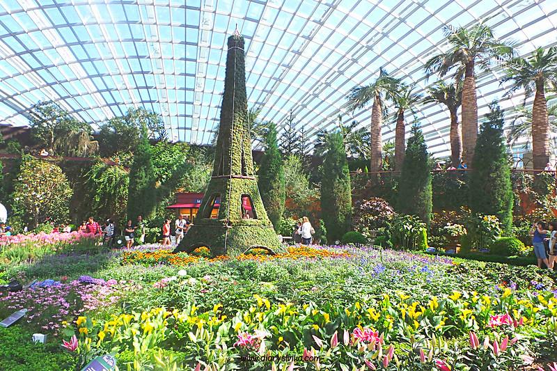 garden by