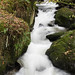 Stockghyll Force 4