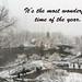 Winter Greetings (20171209-DSC04370-Edit)