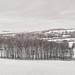 Windrush valley panorama /1