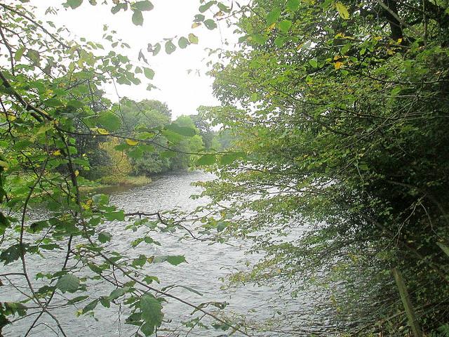 River at Doune