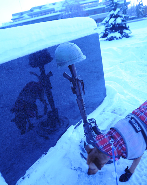 Christmas time - Ain't gonna study war no more, Rosie the service dog, war memorial, reflection on granite, helmet, gun, boots, snow, winter, the Park Strip, downtown, Anchorage, Alaska, USA