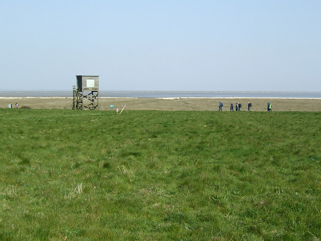 Bird hide at Bradwell-on-Sea