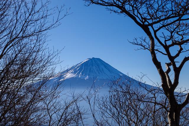 標高1600m手前で富士山お出まし