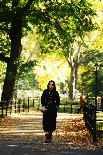 Central Park Tanvii.com 1
