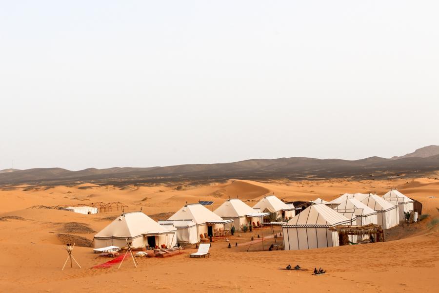 Sahara desert kisses,vera-75