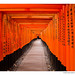 <p><a href=&quot;http://www.flickr.com/people/webzer/&quot;>webzer</a> posted a photo:</p>&#xA;	&#xA;<p><a href=&quot;http://www.flickr.com/photos/webzer/38339769614/&quot; title=&quot;Fushimi Inari-taisha - 7604&quot;><img src=&quot;http://farm5.staticflickr.com/4546/38339769614_86ba287b88_m.jpg&quot; width=&quot;240&quot; height=&quot;166&quot; alt=&quot;Fushimi Inari-taisha - 7604&quot; /></a></p>&#xA;&#xA;<p>Kyoto, Japan<br />&#xA;November 21, 2017</p>