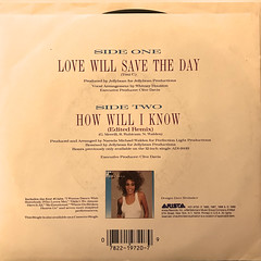 WHITNEY HOUSTON:LOVE WILL SAVE THE DAY(JACKET B)