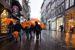 Orange umbrella's @ Amsterdam - Leidse straat