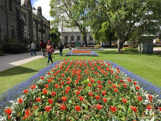 Road Trip vòng quanh New Zealand (3): Christchurch