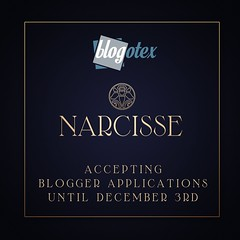 Narcisse is accepting blogger applications