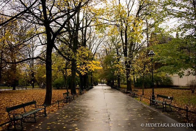 クラクフ 旧市街の公園