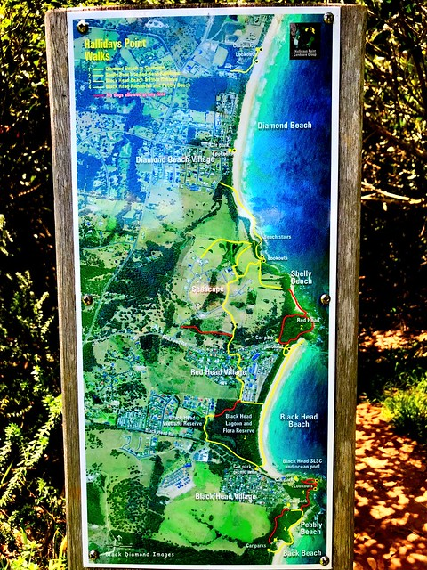 Walking Trail Map of Hallidays Point, Mid North Coast, NSW
