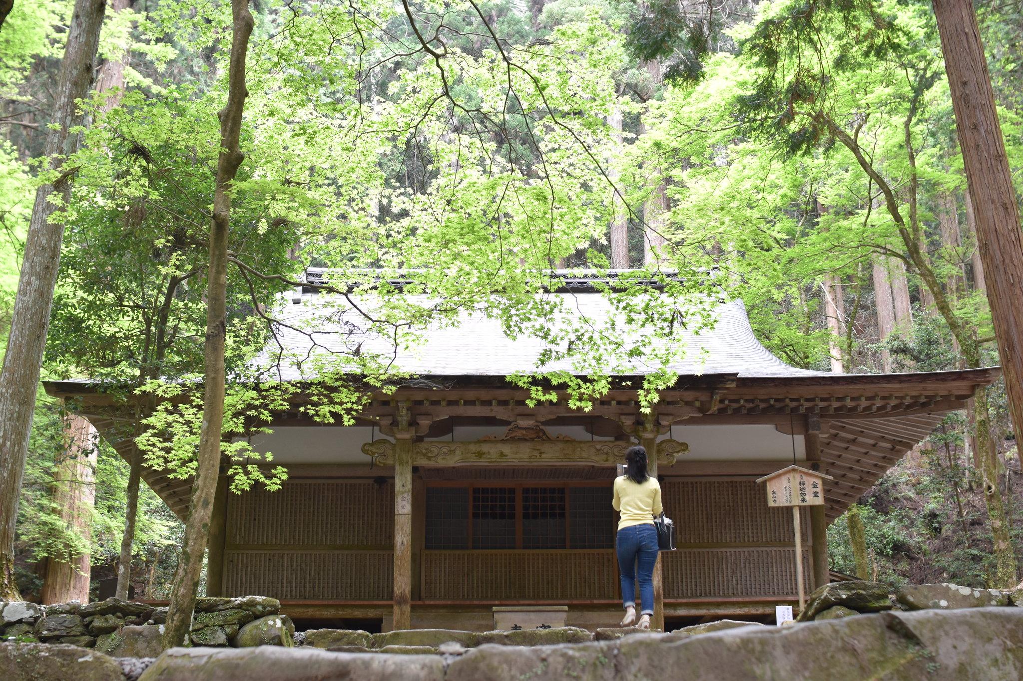 高山寺(Kozanji-temple)