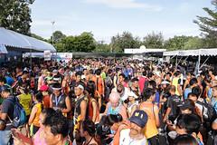 RYmarathon2017_Higlight-189