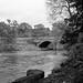River Nidd and Killinghall Bridge.