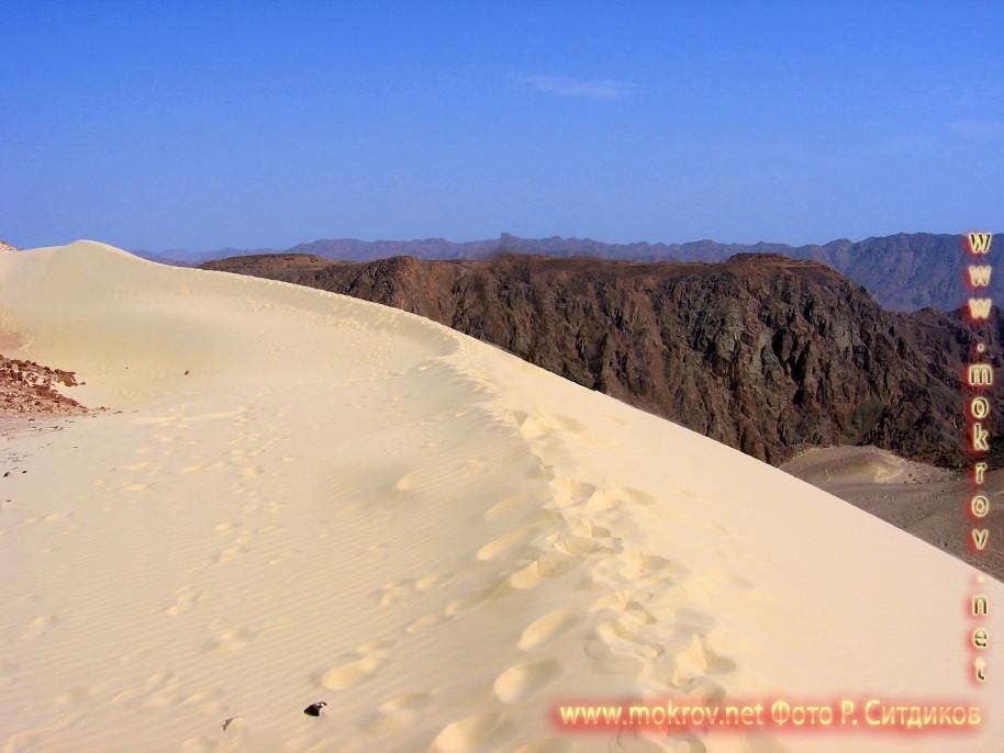 Синайская пустыня на Майне прогулки туристов с Фотоаппаратом