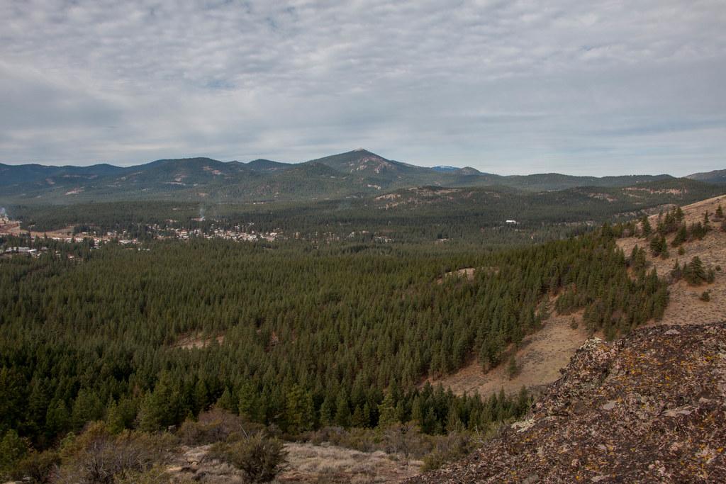 11.24. Portola P trail