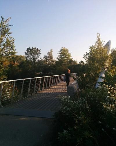 Bridge over Mimico Creek (2) #toronto #humberbaypark #mimicocreek #mimico #bridge #latergram