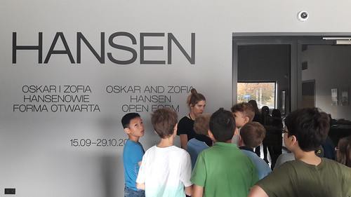 Modern Art Museum (3)
