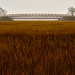 Scarborough Marsh, Maine by jtr27