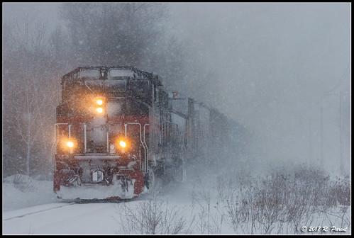 Snowy EDRJ