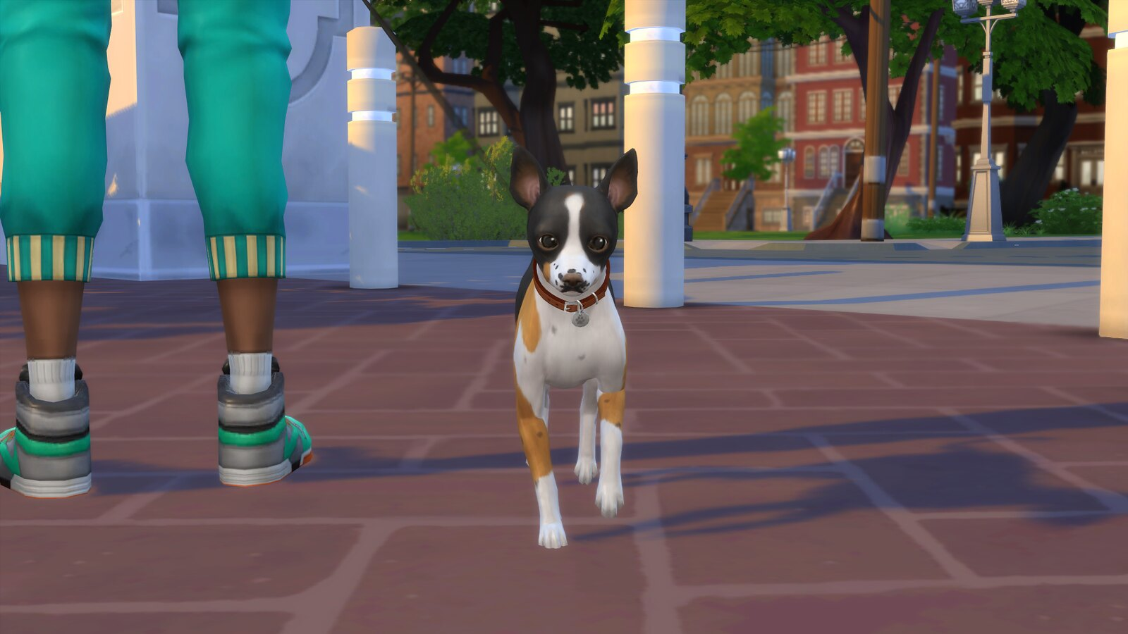 Sims  Cats And Dog In Heat