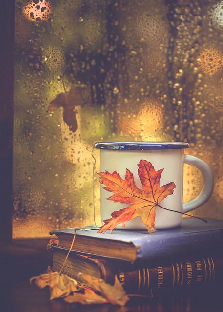 Books, tea and rain drops