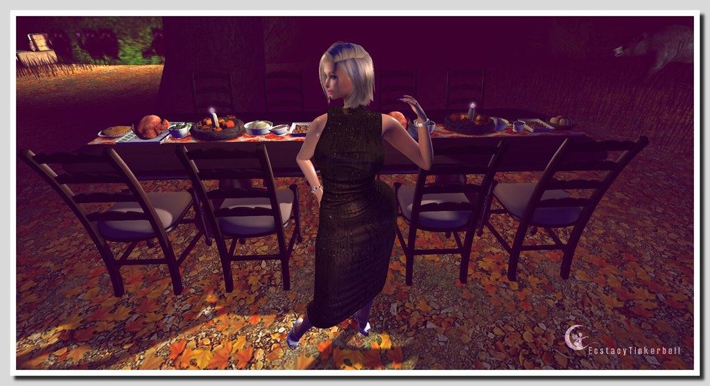 Happy Thanksgiving [S.1.7]