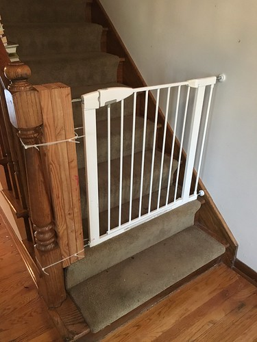 Final Baby Gate (Before)
