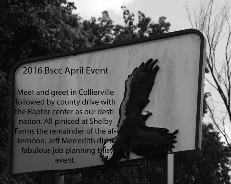 4/16 Mid-South Raptor Center